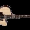 Takamine Pro Series TSF48C